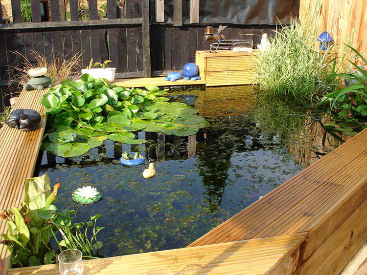 Small pond reconstruction milton keynes aqua maintenance for Small garden pond care